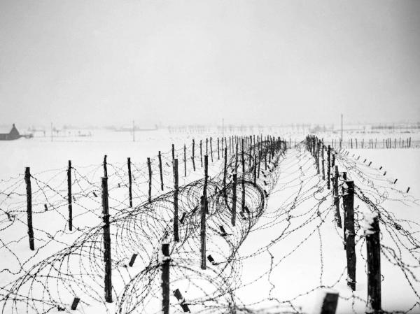 British Barbed Wire Entanglements